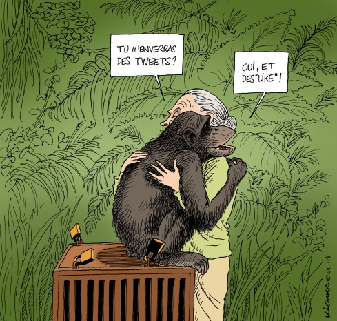 Jane Goodall and Wounda