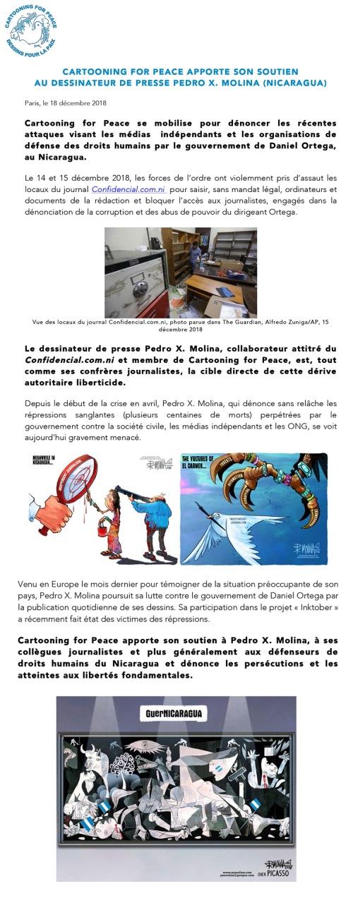 Microsoft Word - CP Pedro Molina_ VF_181217.docx